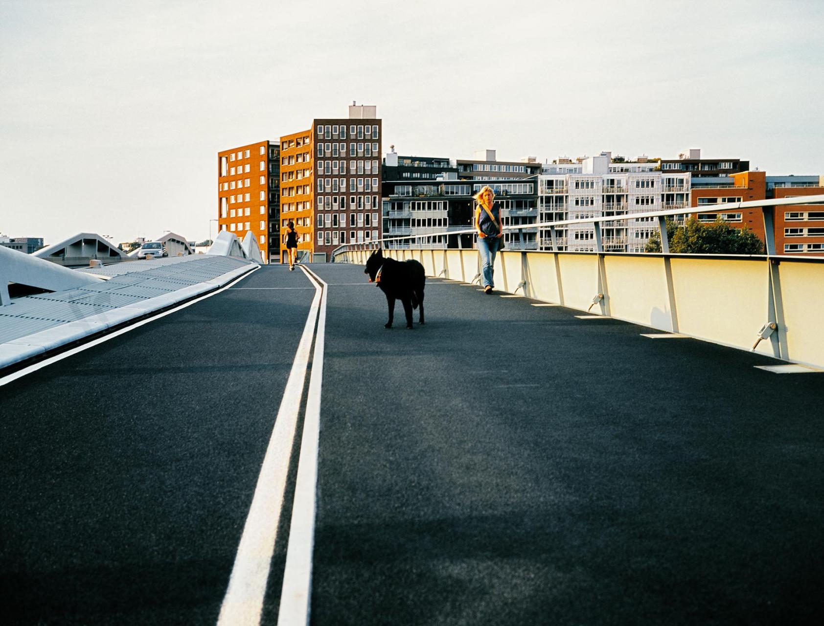 Adidas_V_bridge_05