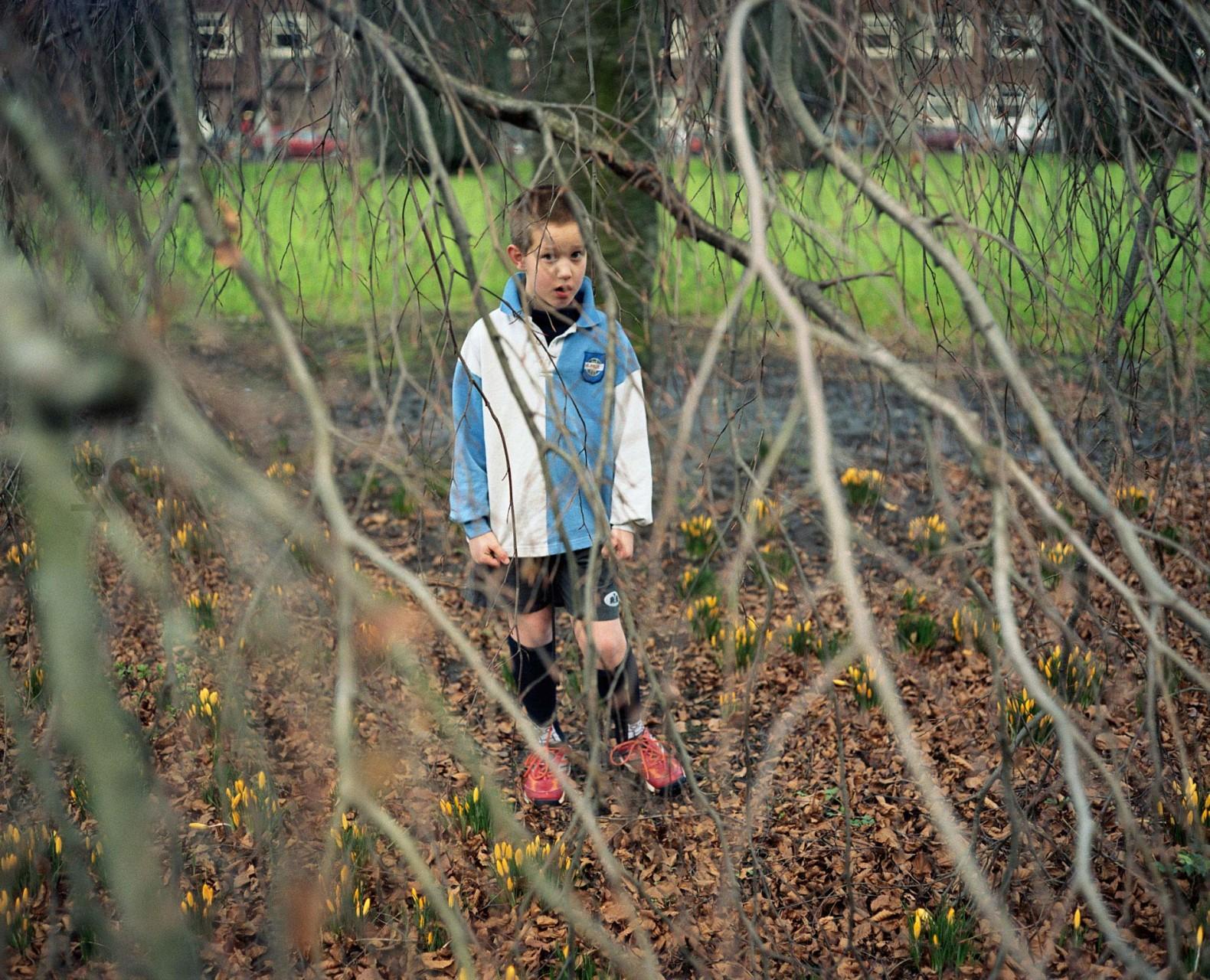 Boy under a tree, 2007