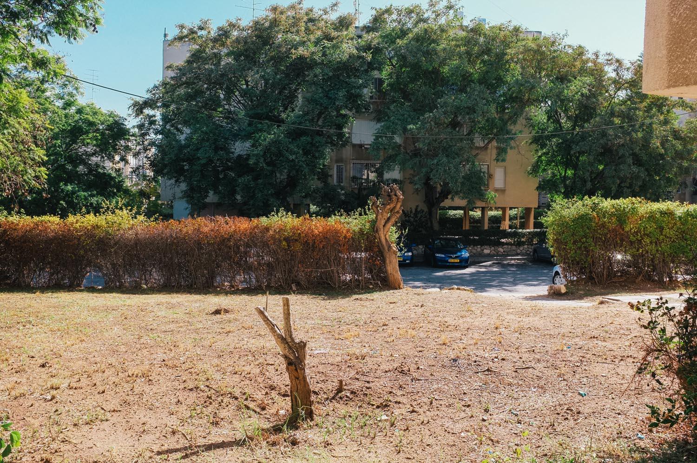 TelAviv2011-1906