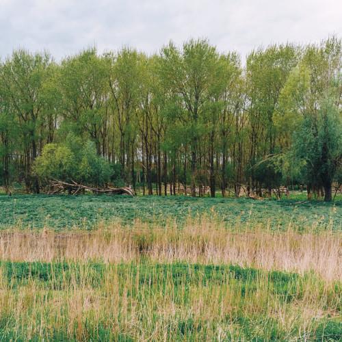 Almere-0109