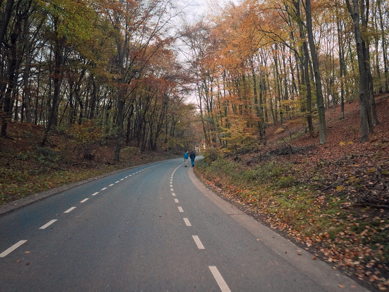RoadOut_3623